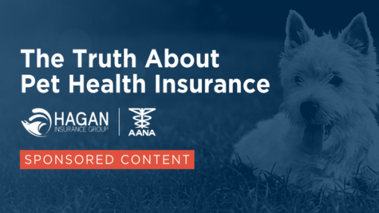 The Truth About Pet Health Insurance